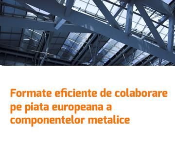 Formate eficiente de colaborare pe piata europeana a componentelor metalice