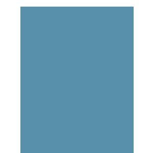 Procesare table si profile